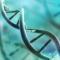 Mutacja genu CAT – acatalasemia